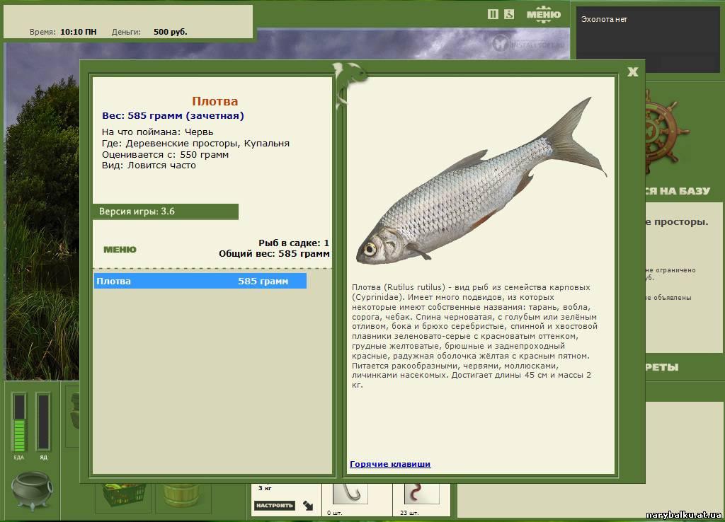 Игра Русская Рыбалка 3 6 Скачать Бесплатно На Компьютер - фото 5